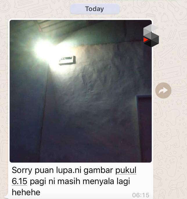 Testimonial Solar Flood Light